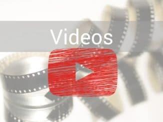 Dendrobaten Terrarium Video